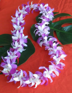 single.mixed.orchid.lei