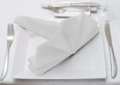 Cotton Dinner Napkins (18 inches x 18 inches)
